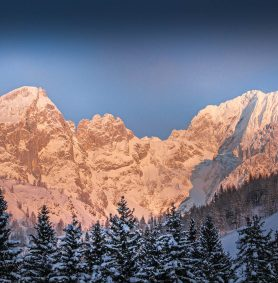 Oberhofalm in Filzmoos - Eindrücke & Impressionen vom Hofalmgebiet