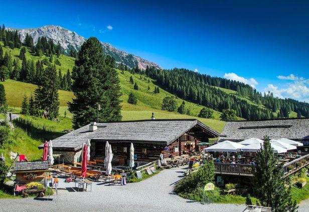 Oberhofalm im Sommer - Ausflugsziel in Filzmoos, Salzburger Land
